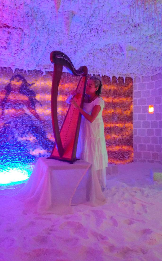 Halos and Harp